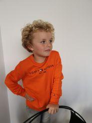 Tommy Hilfiger Pullover Essentail Sweatshirt
