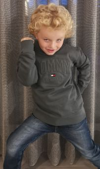 Tommy Hilfiger Pullover Aplique Logo Hoodie